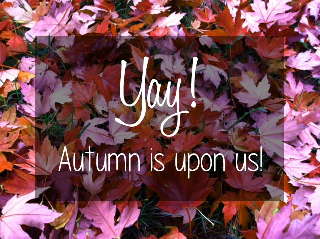 Today's the first day of Fall… - McNabb & Risley