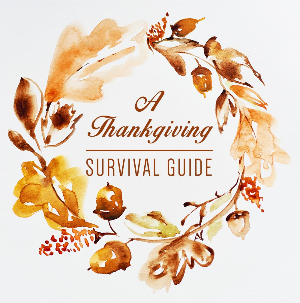 Thanksgiving Survival Guide: A humorous must read before the holiday! - McNabb & Risley