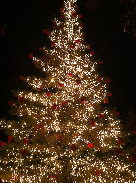 Save the Date! Thiensville's Annual Christmas Tree Lighting is Tonight! - McNabb & Risley